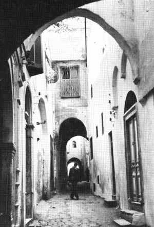 Figure 3: A street in old Tunis, Tunisia. Note the steps for the house on the right are within the fina. Windows are above eye level, and the